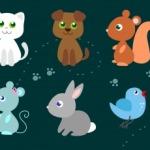 Quiz per bambini: animali